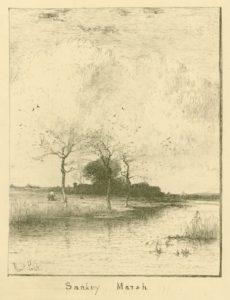 Sankey Marsh